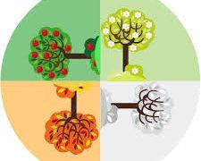 دین درمانی مشکلات خانواده در 5 سطح و 4 فصل