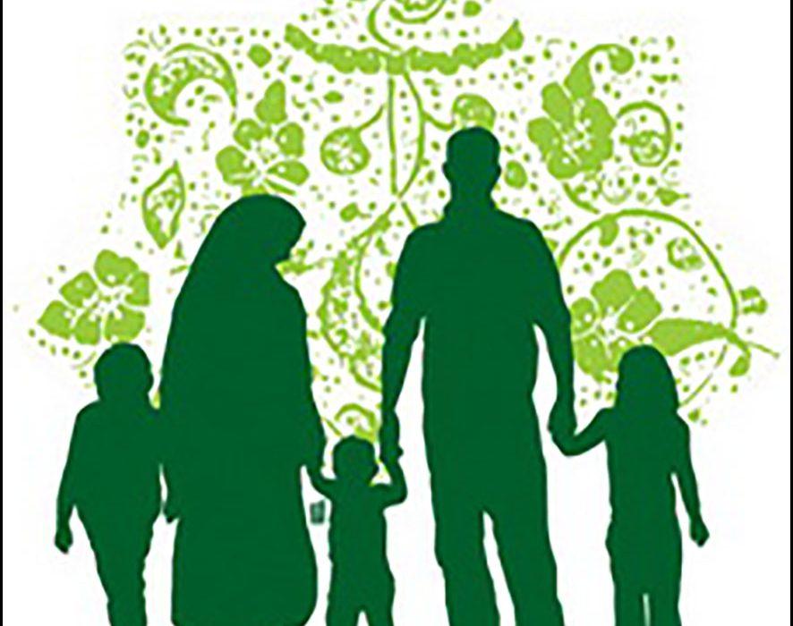 فصل دوم: نقد و بررسی مدلهای رایج درمان مشکلات خانواده
